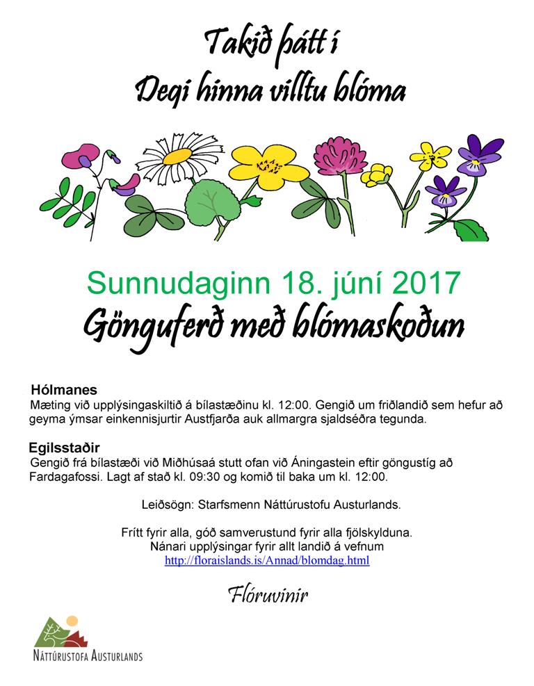 2017 Blomadagurinn austurland