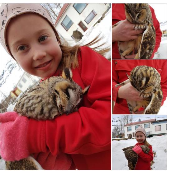 Dagmar Julia Havardardottir fann eyruglu uppi tre NESK